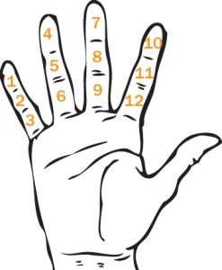 duodecimal-hand